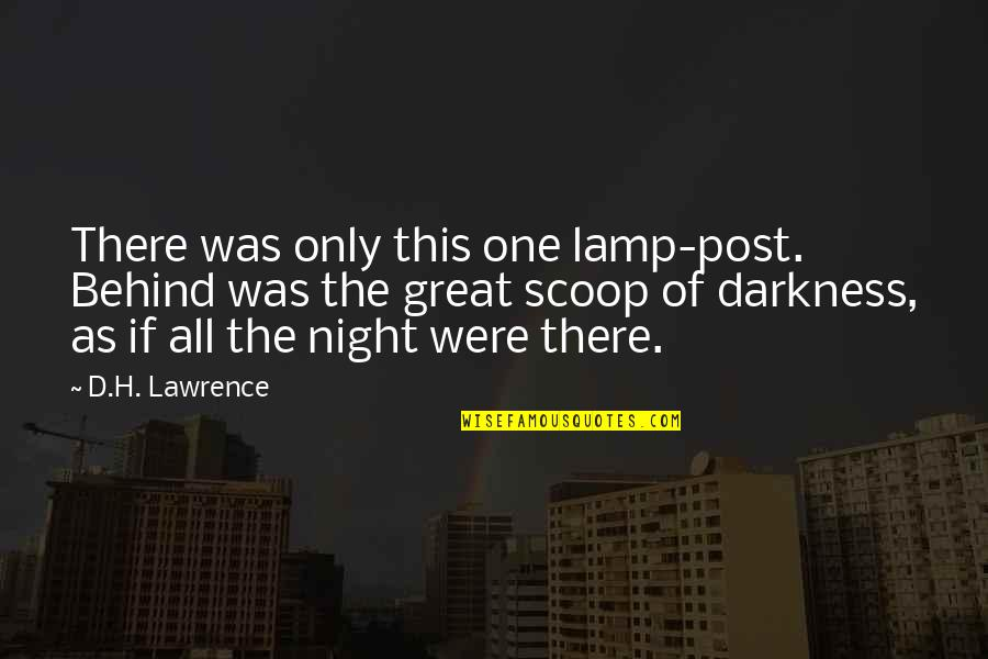 Night Darkness Quotes By D.H. Lawrence: There was only this one lamp-post. Behind was