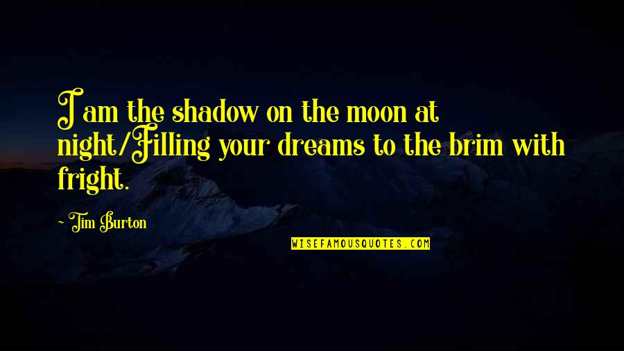 Night Dreams Quotes By Tim Burton: I am the shadow on the moon at