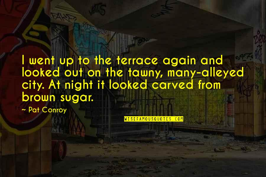 Night In City Quotes By Pat Conroy: I went up to the terrace again and