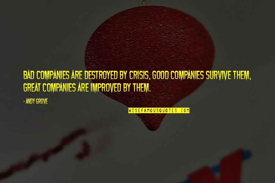 Night Shifts Quotes By Andy Grove: Bad companies are destroyed by crisis, Good companies