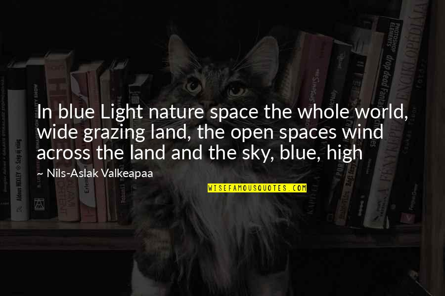 Nils Quotes By Nils-Aslak Valkeapaa: In blue Light nature space the whole world,