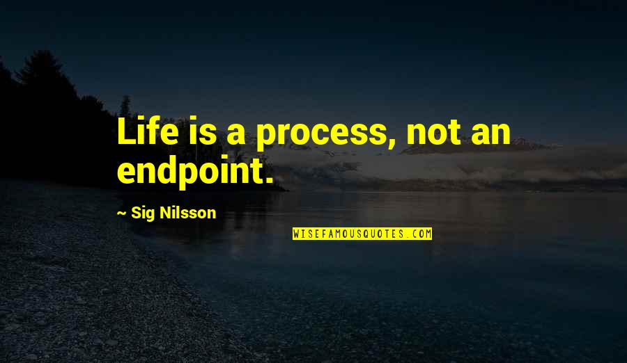 Nilsson Quotes By Sig Nilsson: Life is a process, not an endpoint.