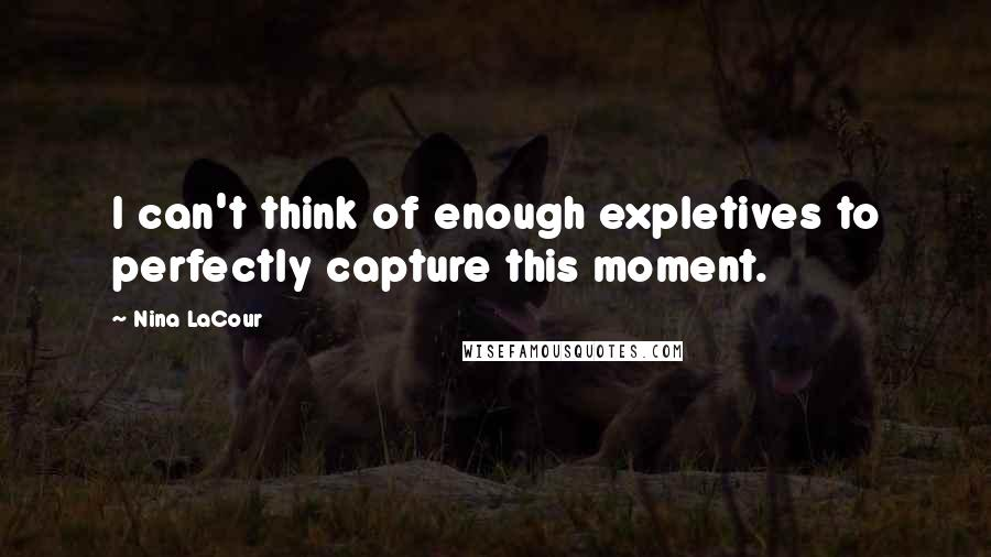 Nina LaCour quotes: I can't think of enough expletives to perfectly capture this moment.