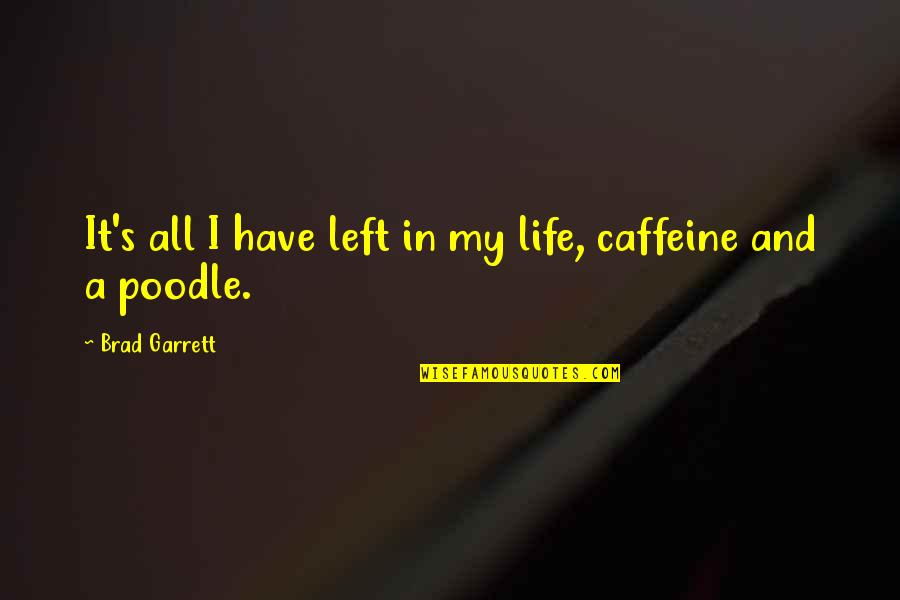 No Caffeine Quotes By Brad Garrett: It's all I have left in my life,