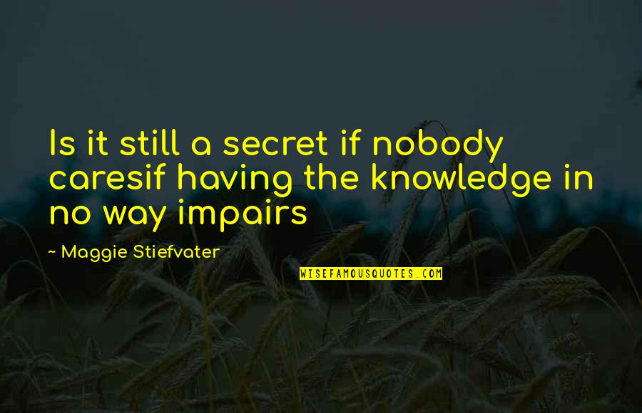 No Cares Quotes By Maggie Stiefvater: Is it still a secret if nobody caresif