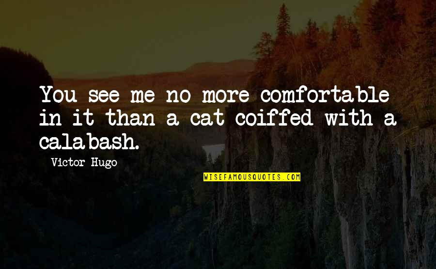 No More Me Quotes By Victor Hugo: You see me no more comfortable in it