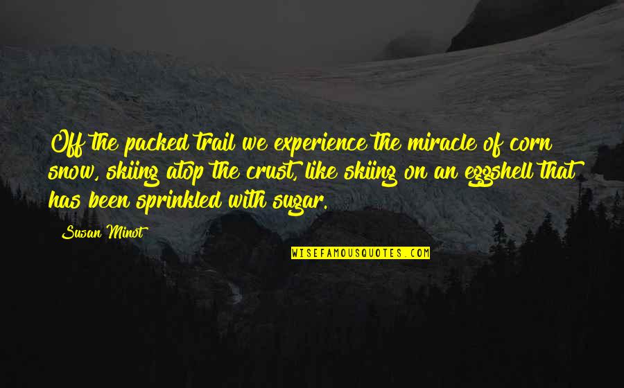 No More Sugar Quotes By Susan Minot: Off the packed trail we experience the miracle