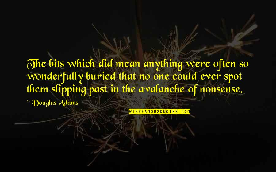 No Nonsense Quotes By Douglas Adams: The bits which did mean anything were often