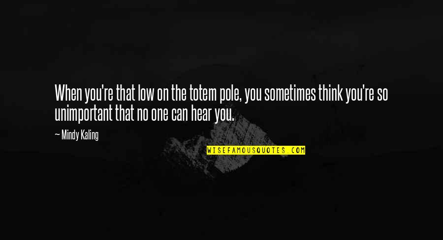 No One Can Hear You Quotes By Mindy Kaling: When you're that low on the totem pole,
