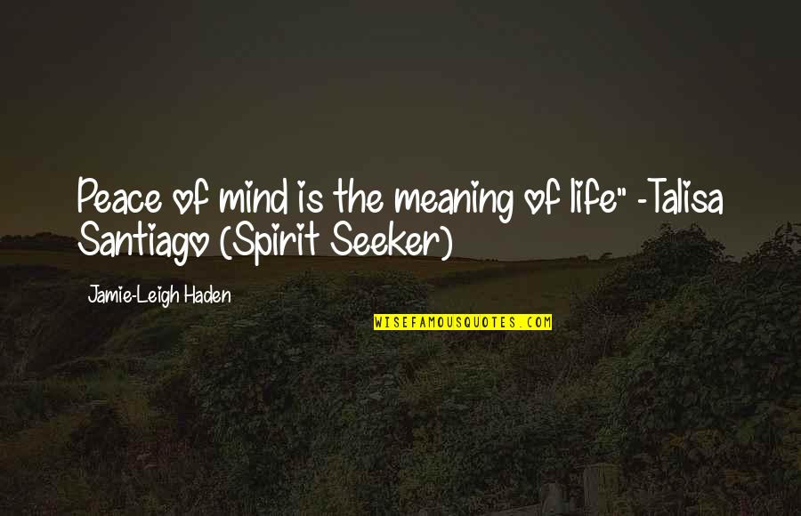 """No Peace Of Mind Quotes By Jamie-Leigh Haden: Peace of mind is the meaning of life"""""""