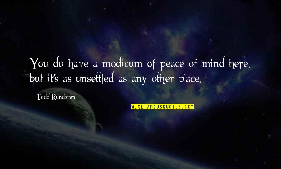 No Peace Of Mind Quotes By Todd Rundgren: You do have a modicum of peace of