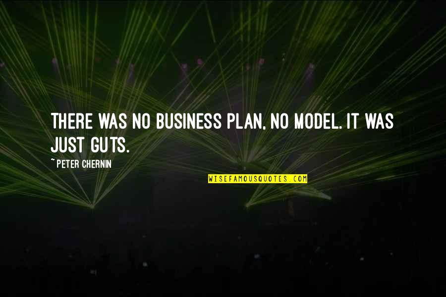 No Plans Quotes By Peter Chernin: There was no business plan, no model. It