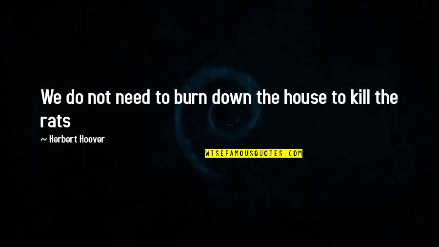 No Rats Quotes By Herbert Hoover: We do not need to burn down the
