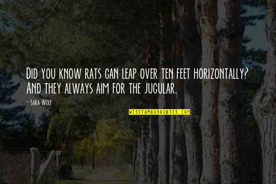 No Rats Quotes By Sara Wolf: Did you know rats can leap over ten