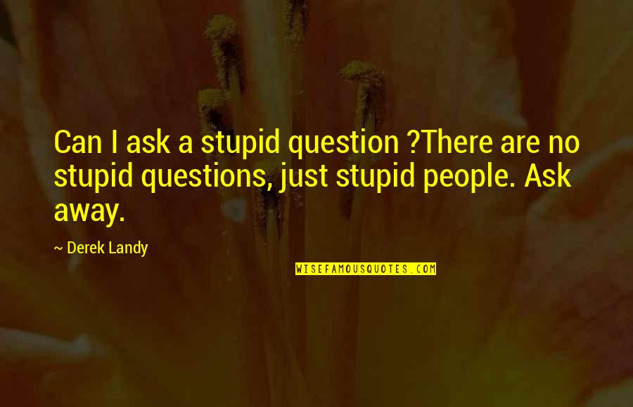 No Stupid Questions Quotes By Derek Landy: Can I ask a stupid question ?There are