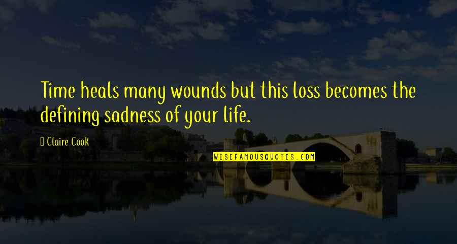 No Time To Cook Quotes By Claire Cook: Time heals many wounds but this loss becomes
