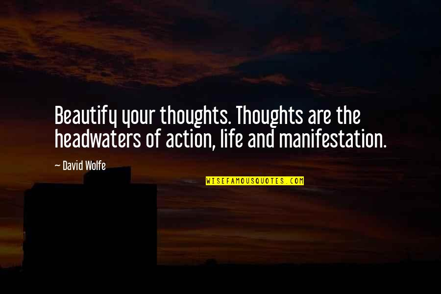 Nobuo Terashima Quotes By David Wolfe: Beautify your thoughts. Thoughts are the headwaters of