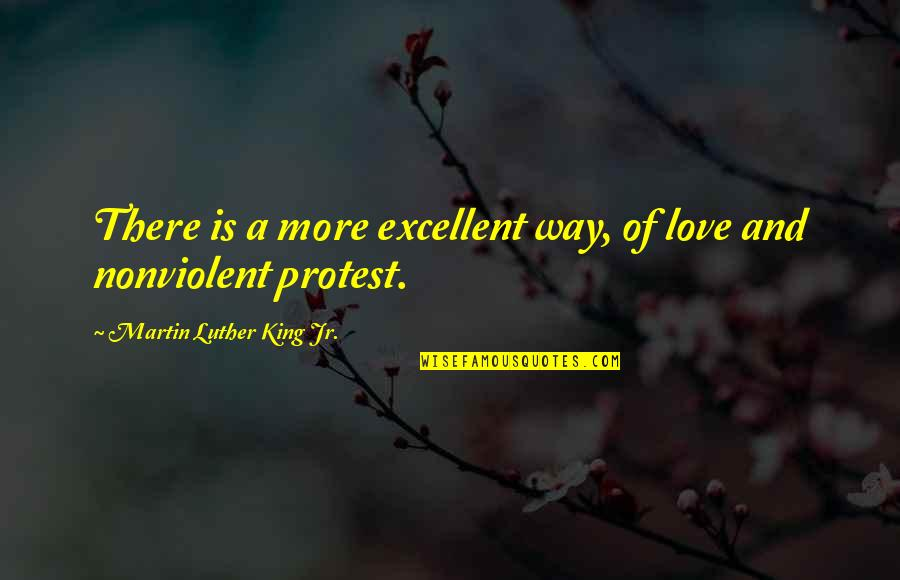 Nonviolent Protest Quotes By Martin Luther King Jr.: There is a more excellent way, of love