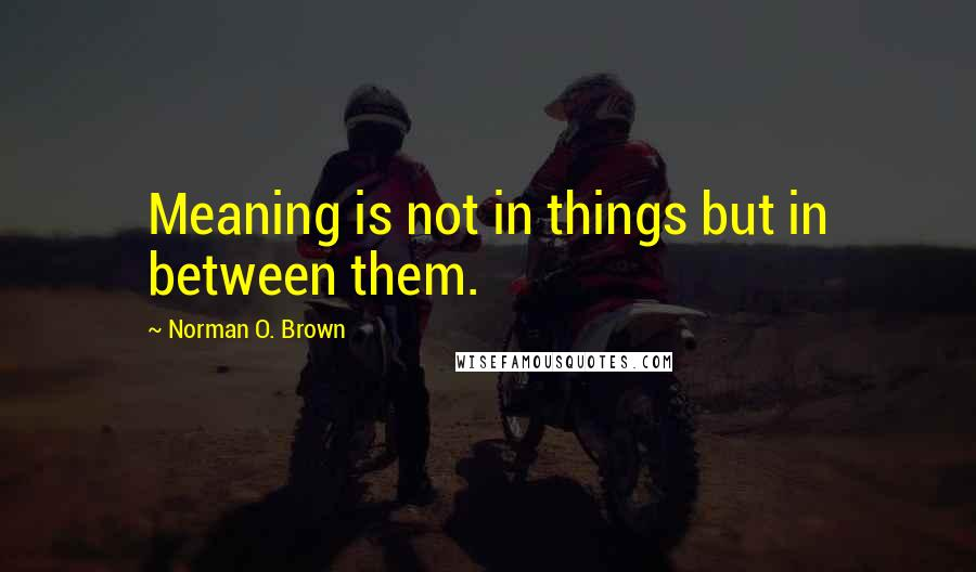Norman O. Brown quotes: Meaning is not in things but in between them.