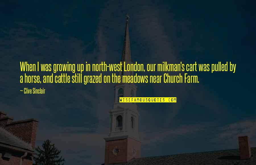 North London Quotes By Clive Sinclair: When I was growing up in north-west London,