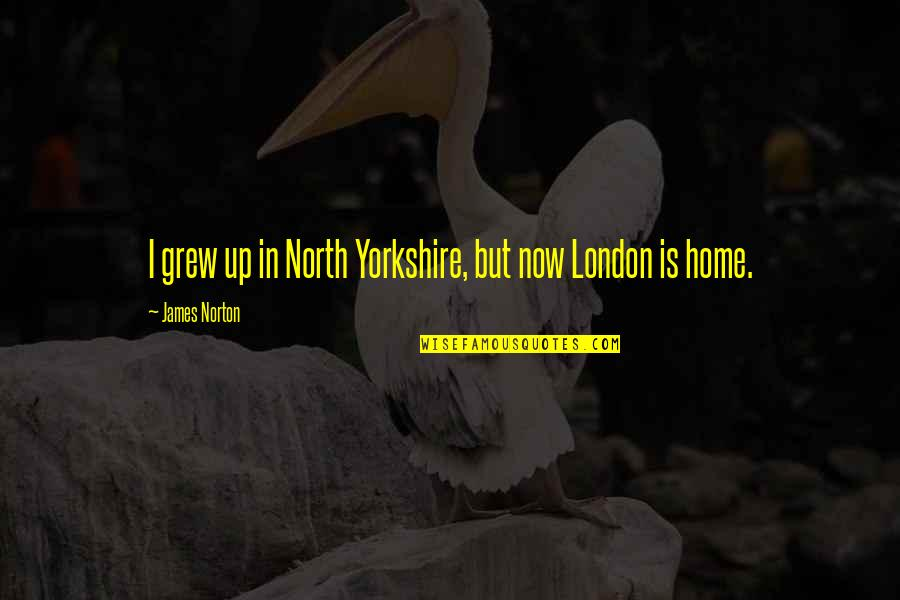 North London Quotes By James Norton: I grew up in North Yorkshire, but now
