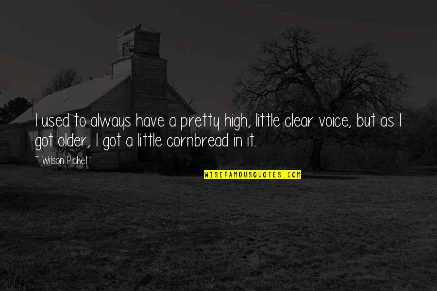 Not Always Pretty Quotes By Wilson Pickett: I used to always have a pretty high,