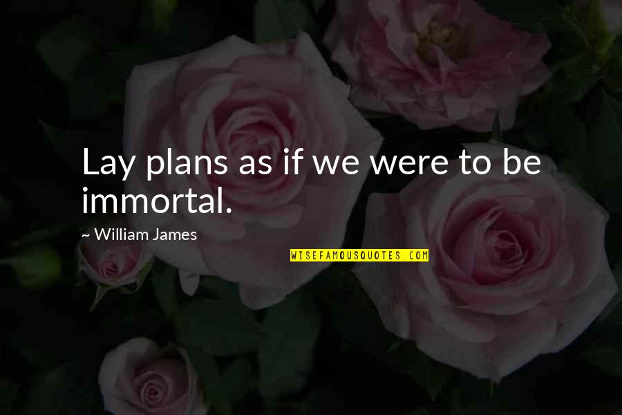 Not Being Appreciated Quotes By William James: Lay plans as if we were to be
