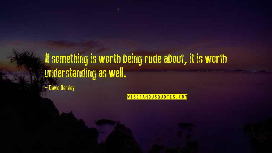 Not Being Rude Quotes By David Bentley: If something is worth being rude about, it