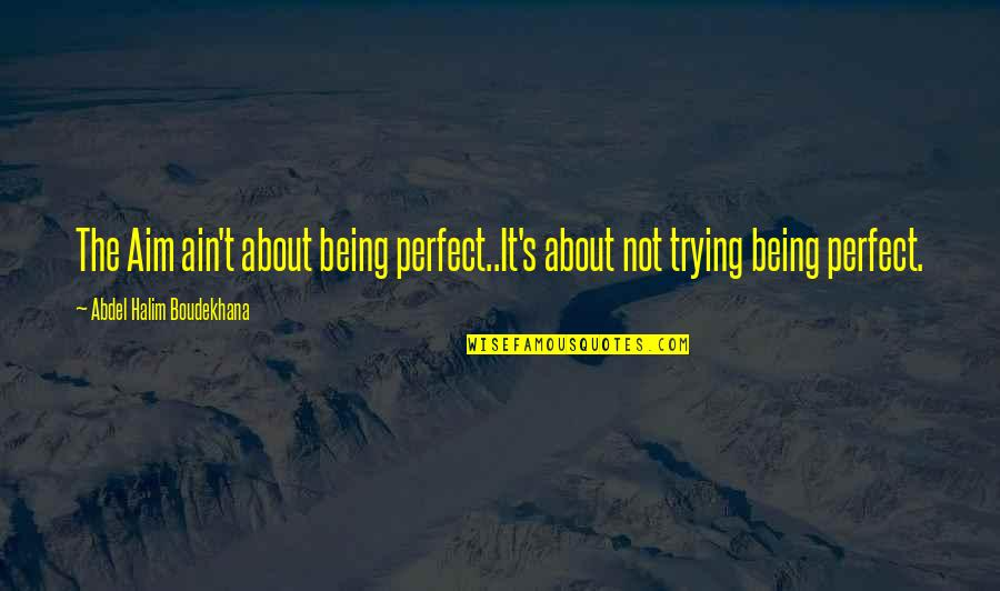 Not Being Sure About Life Quotes By Abdel Halim Boudekhana: The Aim ain't about being perfect..It's about not
