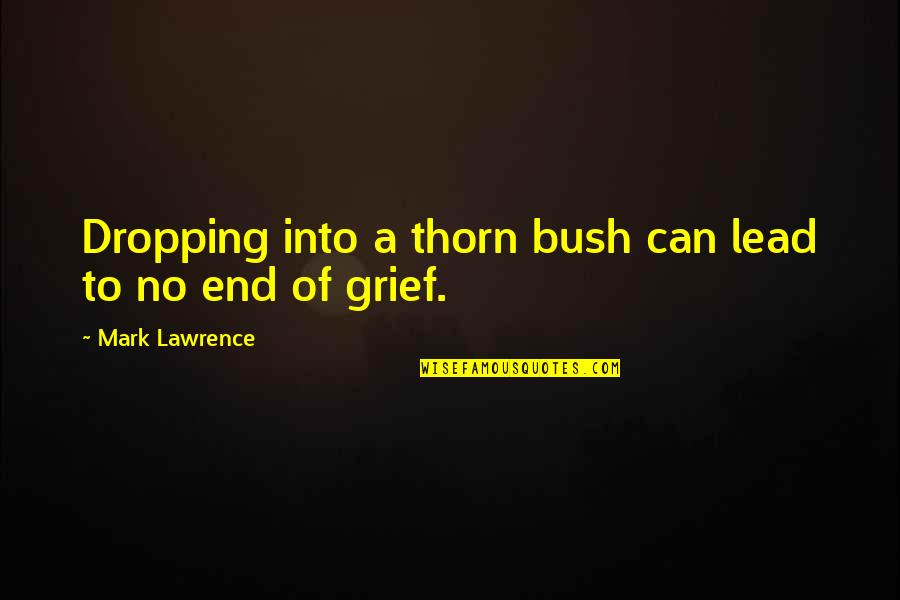 Not Dropping Out Quotes By Mark Lawrence: Dropping into a thorn bush can lead to