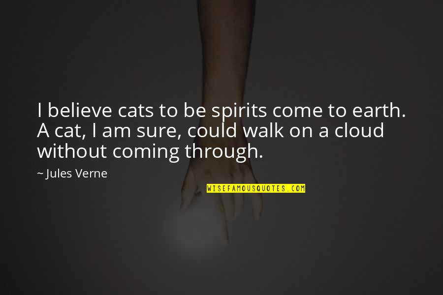 Not Feeling Satisfied Quotes By Jules Verne: I believe cats to be spirits come to