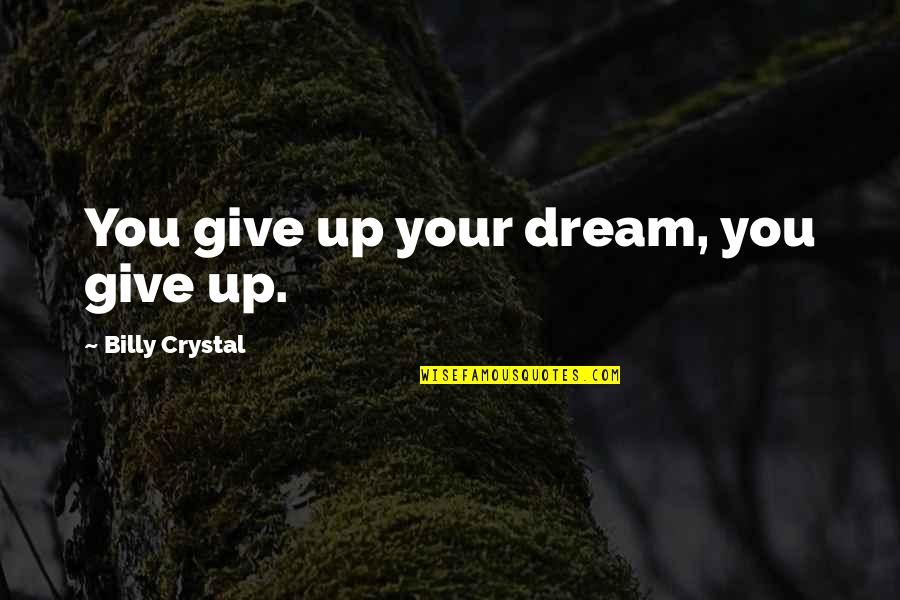 Not Giving Up On Your Dream Quotes By Billy Crystal: You give up your dream, you give up.