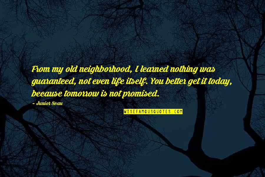 Not Guaranteed Quotes By Junior Seau: From my old neighborhood, I learned nothing was