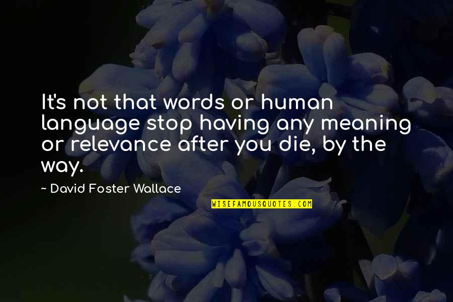 Not Having The Words Quotes By David Foster Wallace: It's not that words or human language stop