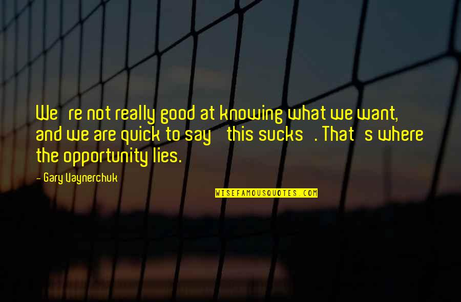 Not Knowing What U Want Quotes By Gary Vaynerchuk: We're not really good at knowing what we