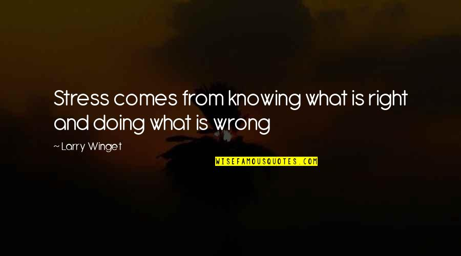 Not Knowing What's Right Quotes By Larry Winget: Stress comes from knowing what is right and