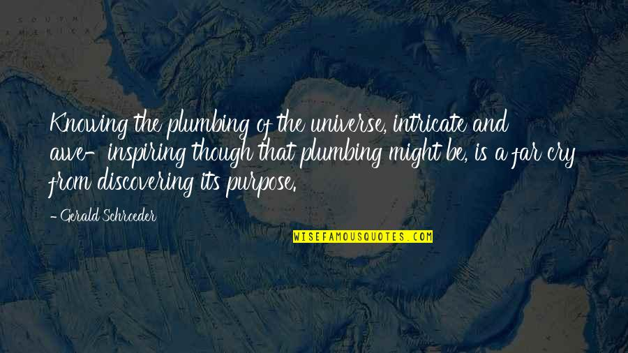 Not Knowing Your Purpose Quotes By Gerald Schroeder: Knowing the plumbing of the universe, intricate and