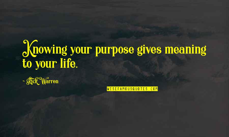 Not Knowing Your Purpose Quotes By Rick Warren: Knowing your purpose gives meaning to your life.
