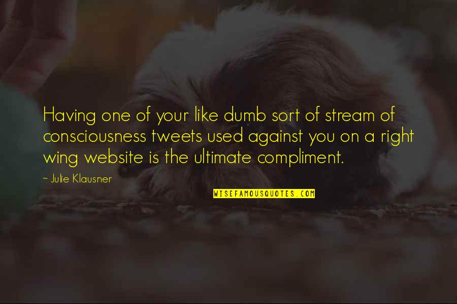 Not Like It Used To Be Quotes By Julie Klausner: Having one of your like dumb sort of