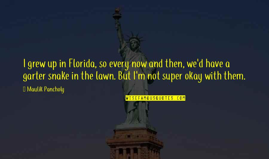Not Okay Quotes By Maulik Pancholy: I grew up in Florida, so every now