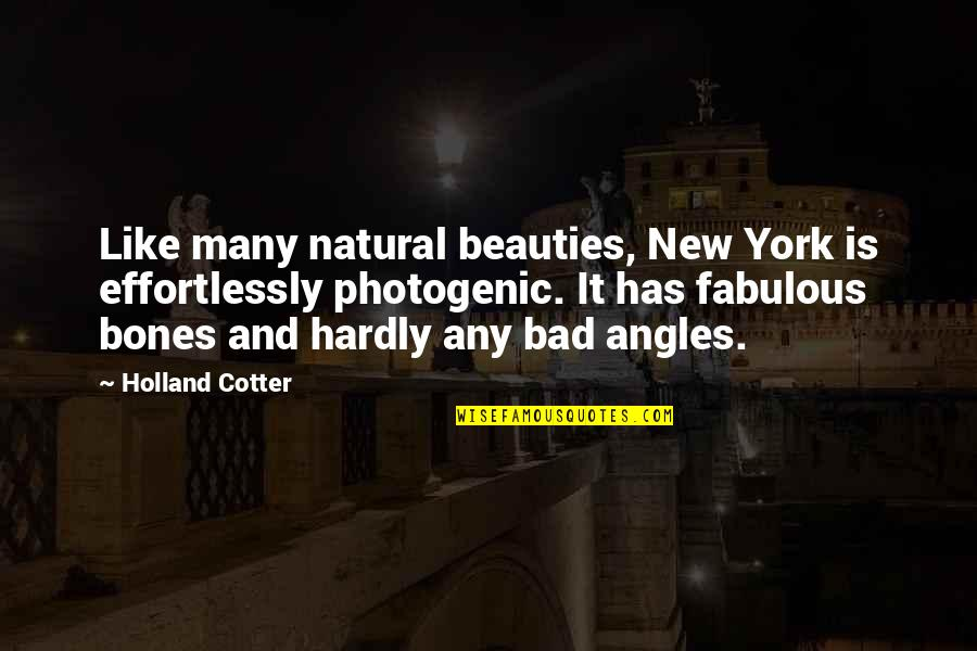 Not Photogenic Quotes By Holland Cotter: Like many natural beauties, New York is effortlessly