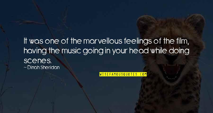 Not Sure Feelings Quotes By Dinah Sheridan: It was one of the marvellous feelings of