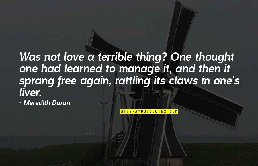 Not To Love Again Quotes By Meredith Duran: Was not love a terrible thing? One thought