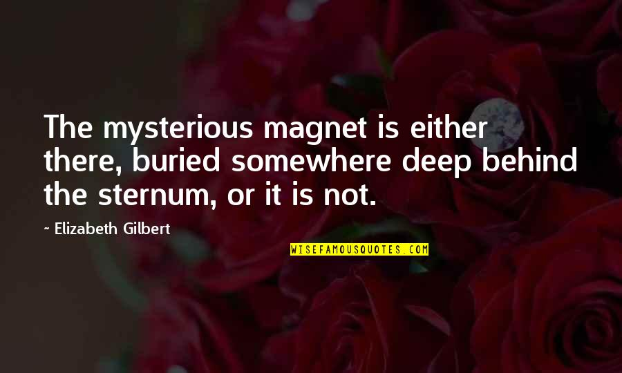 Not Too Deep Quotes By Elizabeth Gilbert: The mysterious magnet is either there, buried somewhere
