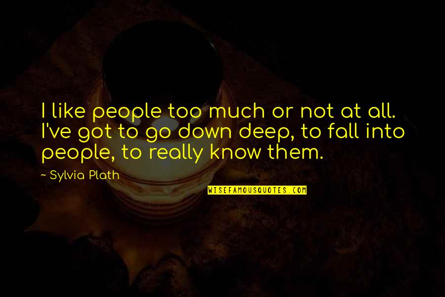 Not Too Deep Quotes By Sylvia Plath: I like people too much or not at