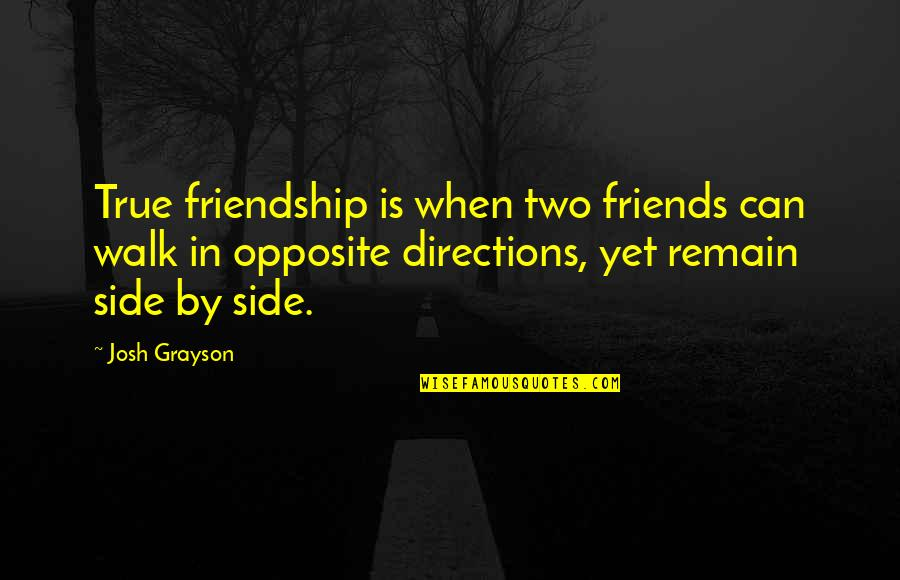 Not True Friendship Quotes By Josh Grayson: True friendship is when two friends can walk