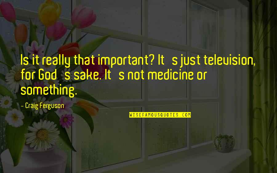 Not Using Common Sense Quotes By Craig Ferguson: Is it really that important? It's just television,