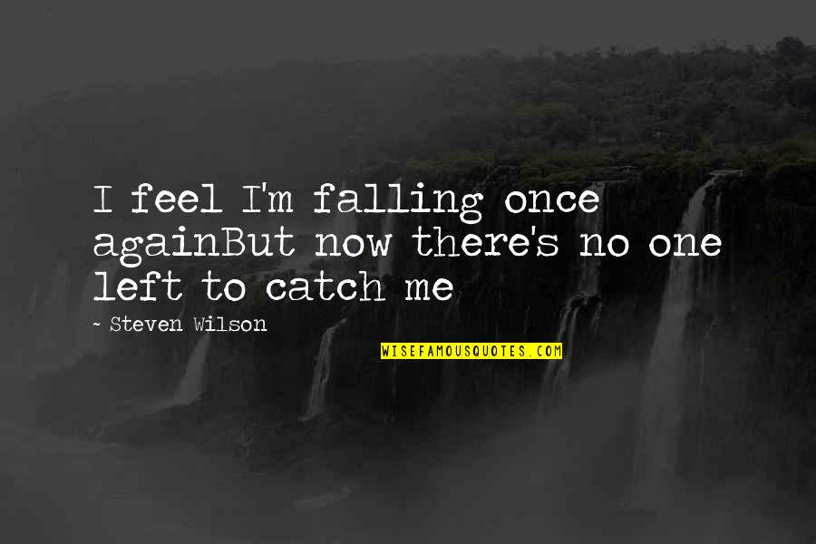 Not Well Known Movie Quotes By Steven Wilson: I feel I'm falling once againBut now there's