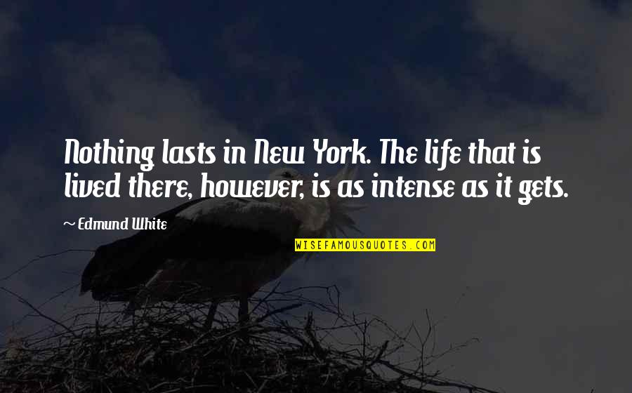 Nothing Lasts Quotes By Edmund White: Nothing lasts in New York. The life that