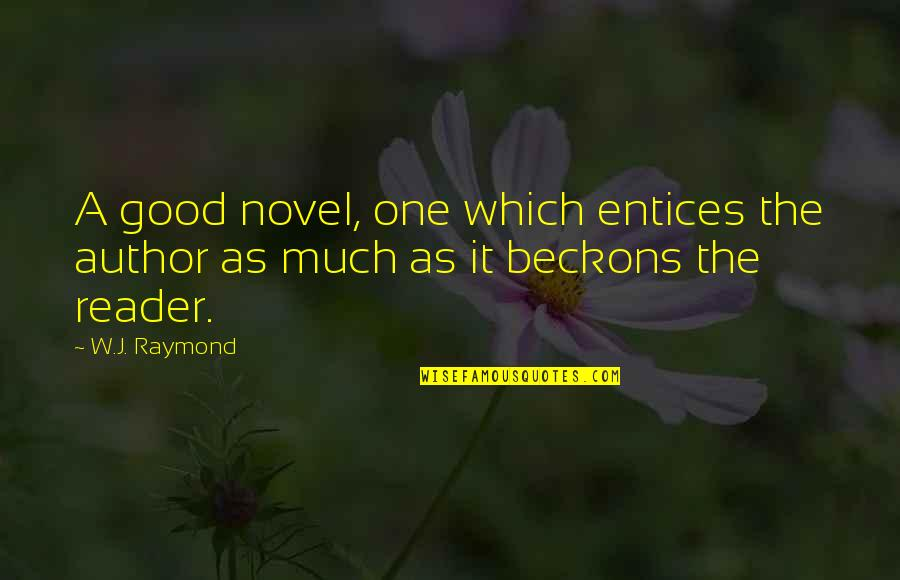 Novel Reader Quotes By W.J. Raymond: A good novel, one which entices the author